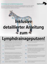 Anleitung Lymphdrainageputzen