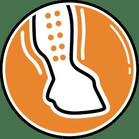 Bandage mit Häckchenverschluss