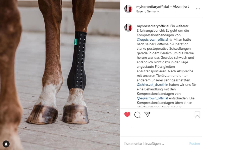 myhorsediaryofficial Influencer für Pferde auf Instagram