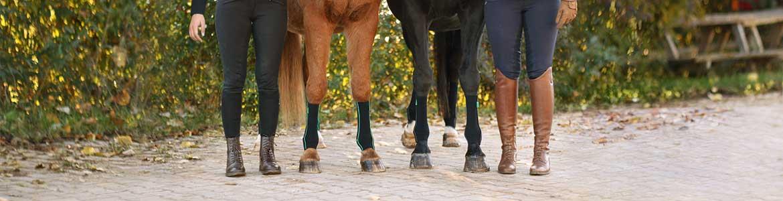 Pferde mit EquiCrown Bandagen und ihre Besitzer