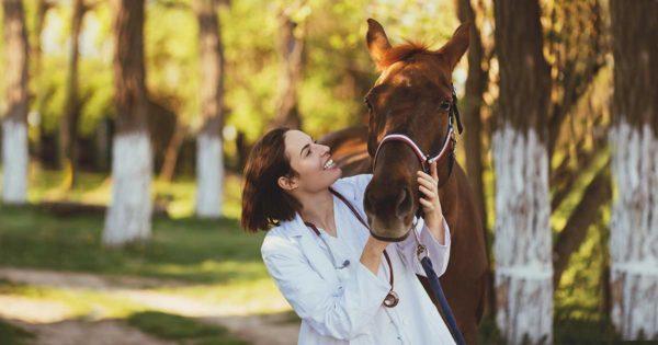 Pferdetierärztin mit Pferd